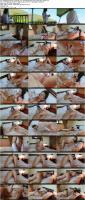 201490858_adelmorelcollection_metartx-20-07-23-adel-morel-morning-coffee-xxx-1080p_s.jpg