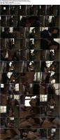 201491660_adrianachechikcollection_penthouse-steampunk-alternasluts-2_s.jpg