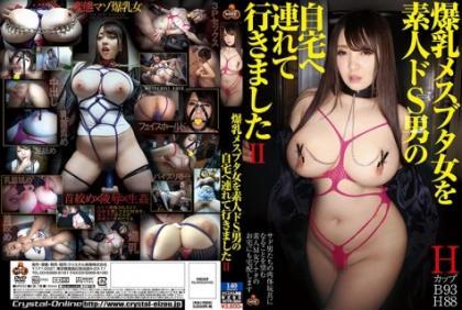 NITR-384 I Brought The Big Tits Female Swine Woman To An Amateur S Man's Home II