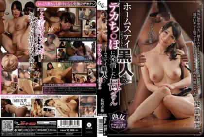 GVG-580 The Black Man's Deck Who Came To The Homestay ○ Mother Who Estrus On Po Masaka Kosuzumi